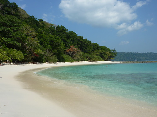 Diving in Havelock – Andaman Holidays